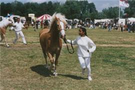 Rebecca met paard