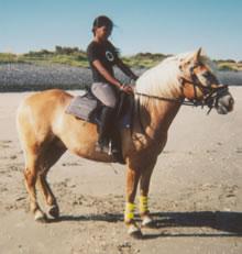 Rebecca op strand met paard